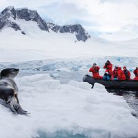Antarctica One Ocean expedition Leopard seal Contours Travel