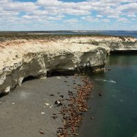 Argentina Puerto Madryn Punta Loma Natural reserve