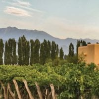 Landscape of Cavas Wine Lodge Mendoza Argentina Contours Travel