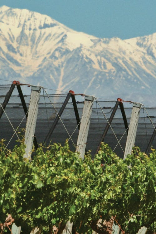 Wine country in Mendoza Argentina Furlong Contours Travel