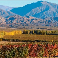 Landscape of wine country in Mendoza Argentina Furlong Contours Travel