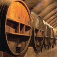 Wine barrel in winery of Mendoza Argentina Gov Contours Travel