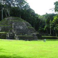 Caracol Maya ruin in Cayo District Belize Contours Travel