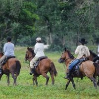 Brazil Araras Pantanal EcoLodge - Horseback Riding Contours Travel