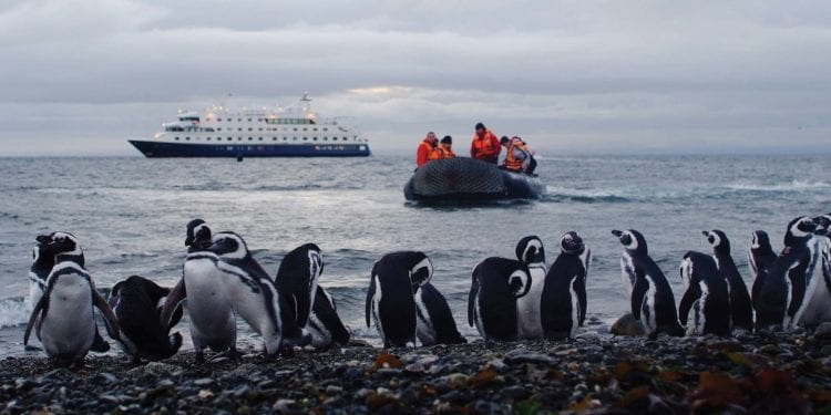 Australis Cruise from Punta Arenas to Ushuaia