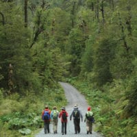 Hike in Lake District Patagonia Chile Proturs Contours Travel