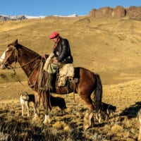 Activities horse back ride Patagonia Torres del Paine Chile Tierra Patagonia CHT5457
