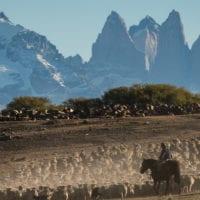 Chile Tierra Patagonia gauchos Contours Travel