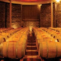 Barrels in the Wine Cellar at Matetic Vineyards Chile Protours Contours Travel