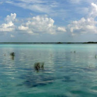 landscape of Bacalar lagoon in Mexico. Contours Travel