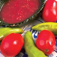 Culinary food salsa roja Mexico SECTUR Contours Travel