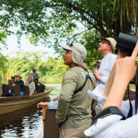 Birdwatching in the amazon jungle Aria Amazon River Cruise wildlife Amazon Iquitos Peru Aqua Expeditions Contours Travel