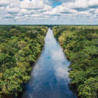 Peru Amazon Rainforest Amazon River Landscape