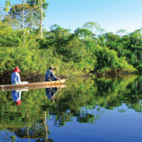 Mirrored Forest in the amazon jungle Aria Amazon River Cruise Amazon Iquitos Peru Aqua Expeditions Contours Travel