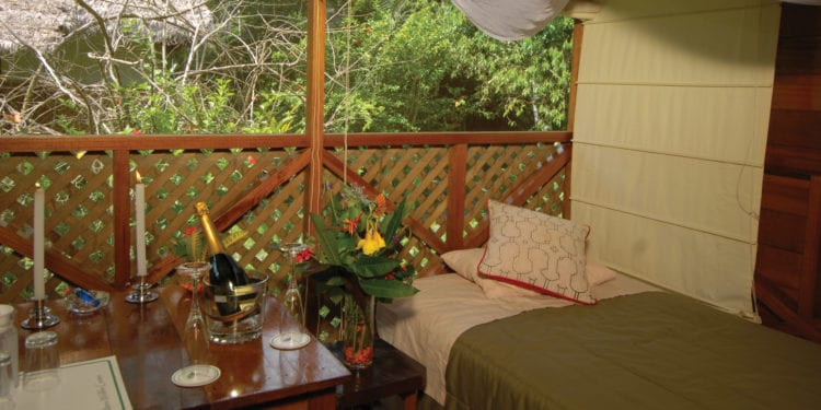 Manu Wildlife Centre Lodge
