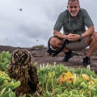 Wildlife Owl El Barranco Genovesa Galapagos courtesy of Metropolitan Touring Contours Travel